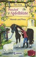 Ponyhof Apfelblüte, Band 4 - Hannah und Pinto